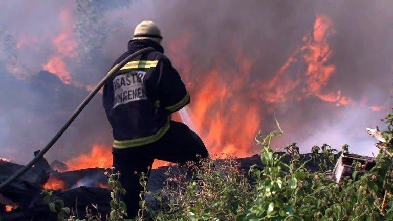 Les forêts Africaines sont aussi en flammes