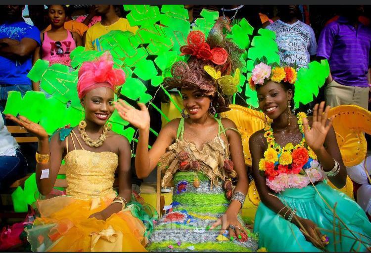 Ayiti-Kanaval: Branch opozisyon depatman Nòdwès la dil dakò 100% pou kanaval nasyonal 2021 an fèt nan vil podepè
